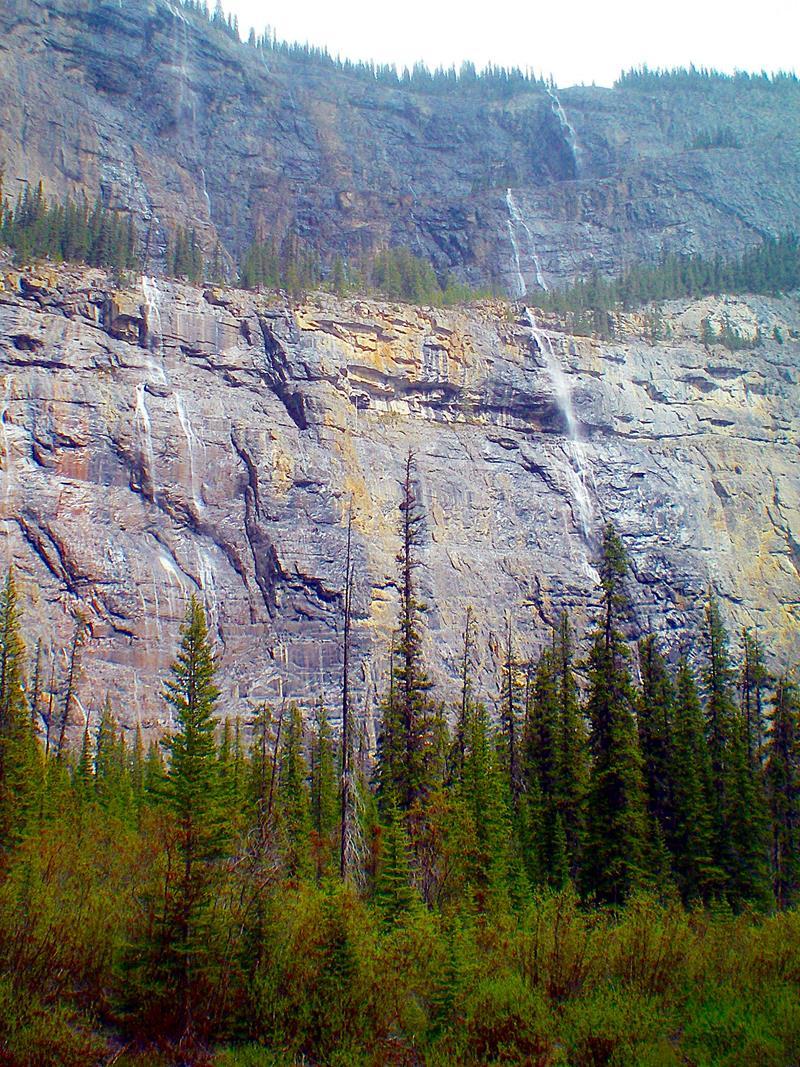 Die Weeping Wall am Icefields Parkway zwischen Banff und Jasper