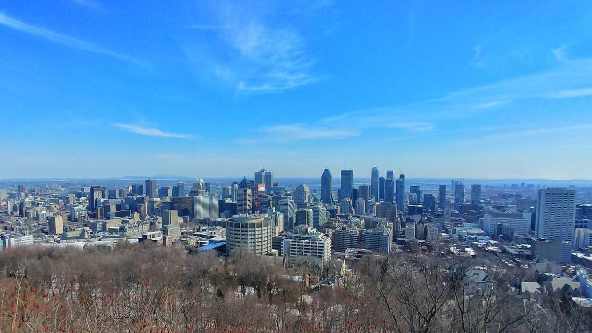 Spektakulärer Blick auf Montreals Skyline vom Parc du Mont Royal