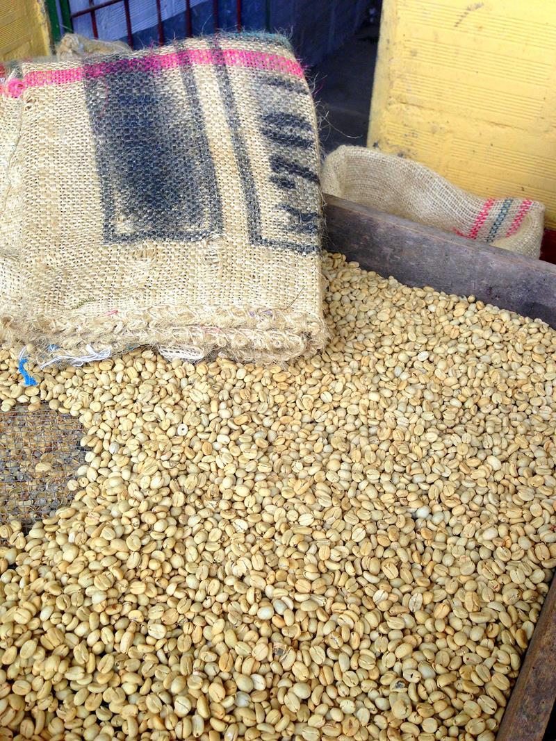 Besuch und Führung auf der Kaffeefarm Finca El Ocaso in der Nähe von Salento