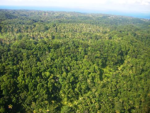 Blick aus dem Fenster während des Landeanflugs in Dominica