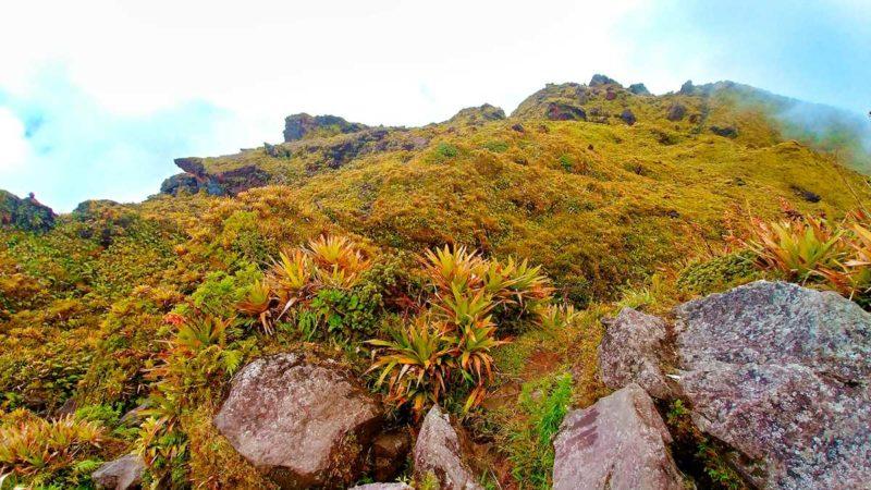 Der Gipfel des höchsten Berges auf Martinique, Montagne Pelée