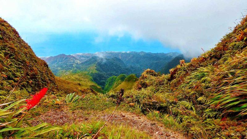 Ausblick vom Montagne Pelée auf die Westseite von Martinique