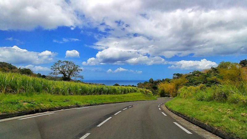 Mit dem Mietwagen über Martinique auf kurvigen Straßen
