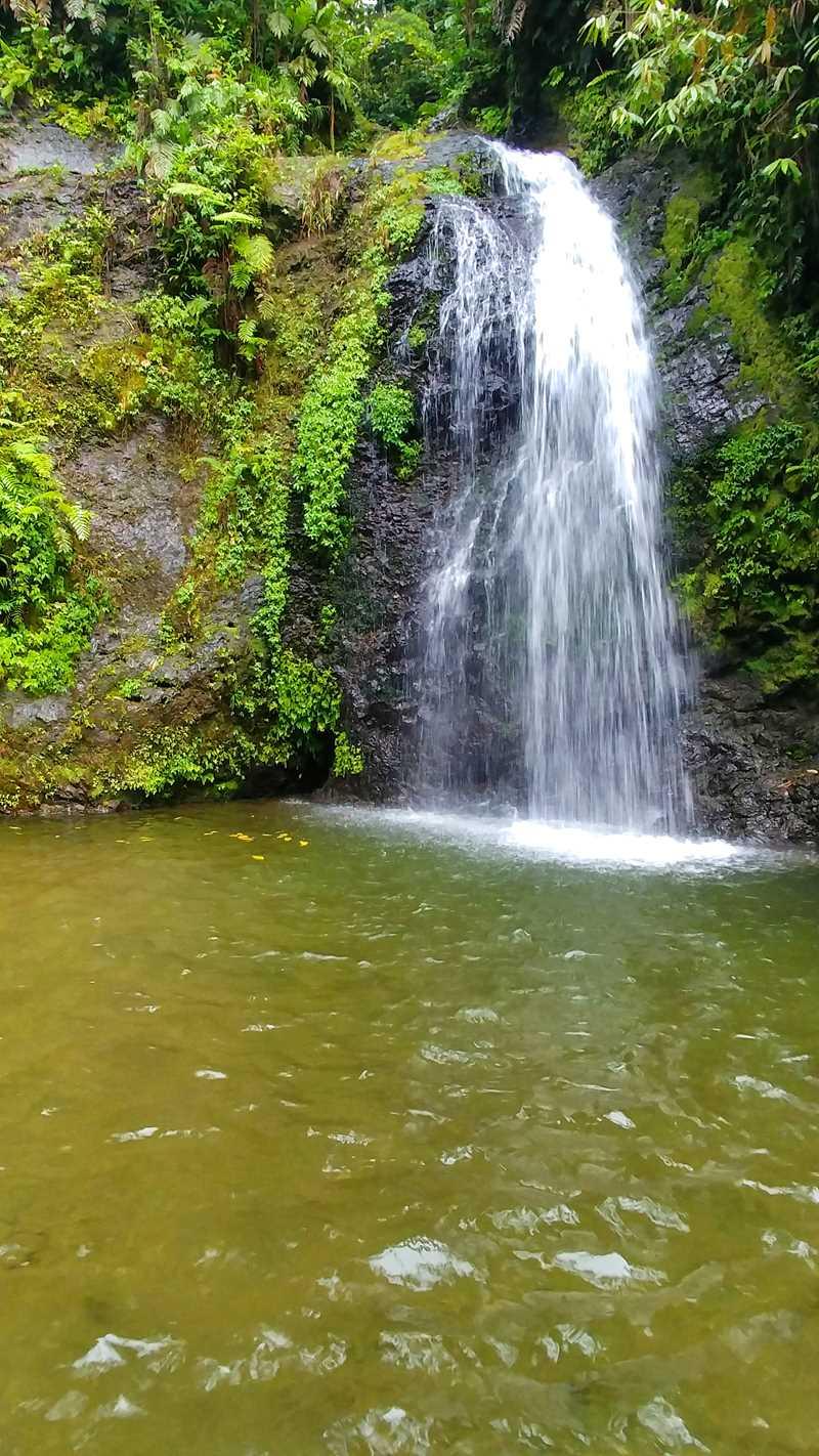 Der Wasserfall Saut Gendarme auf Martinique