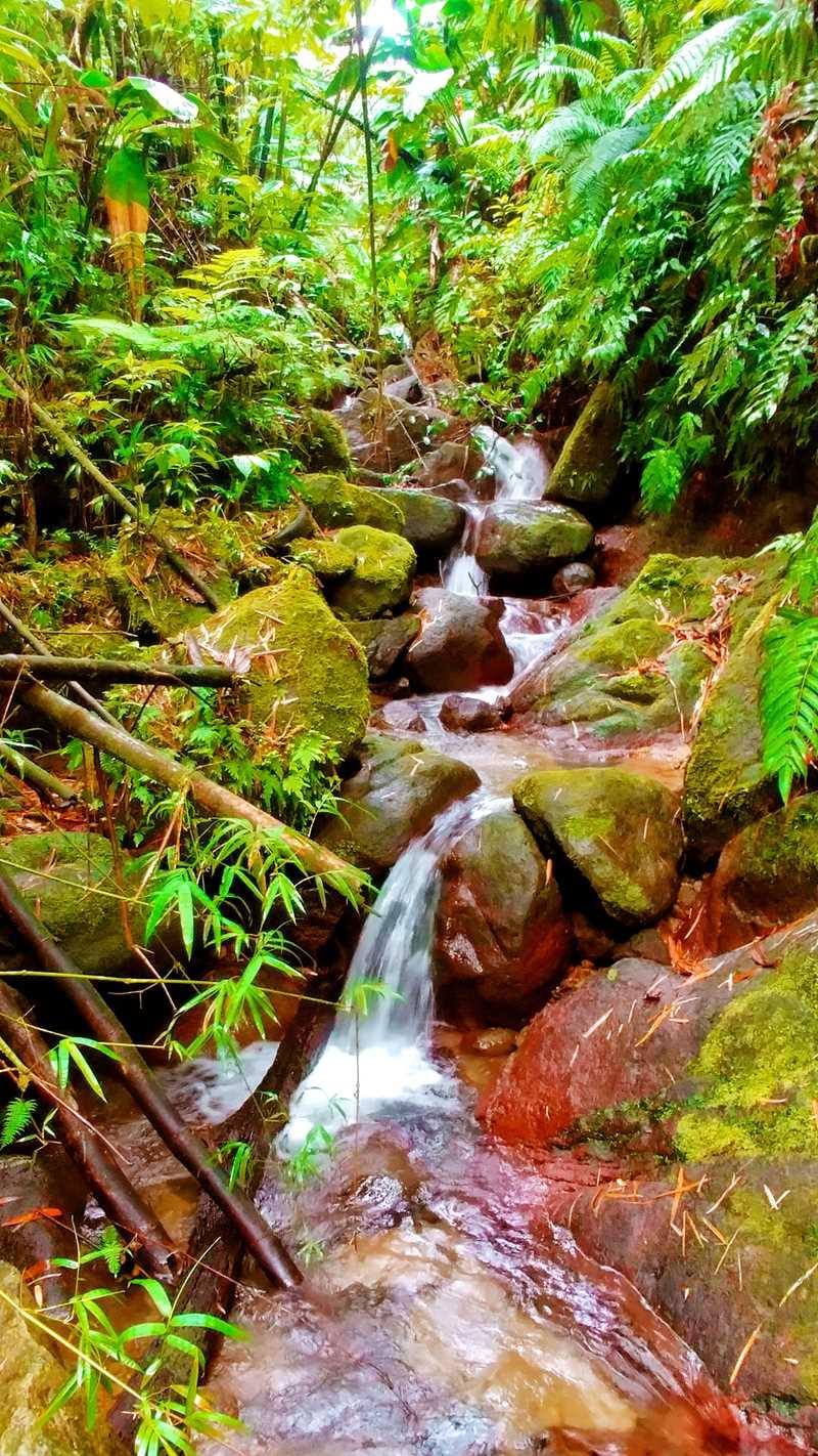 Ein Nebenfluss des Wasserfalls Saut Gendarme auf Martinique
