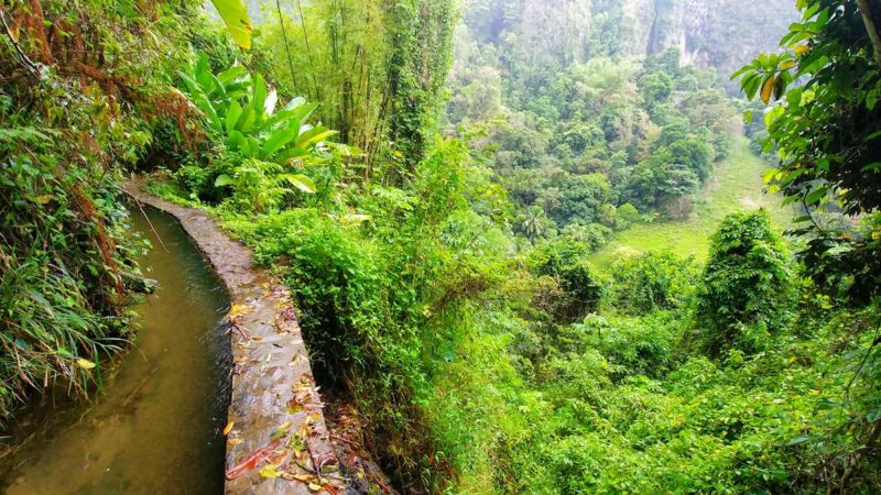 Eine Wanderung auf Martinique entlang des Canal de Beauregard bzw. des Canal des Esclaves