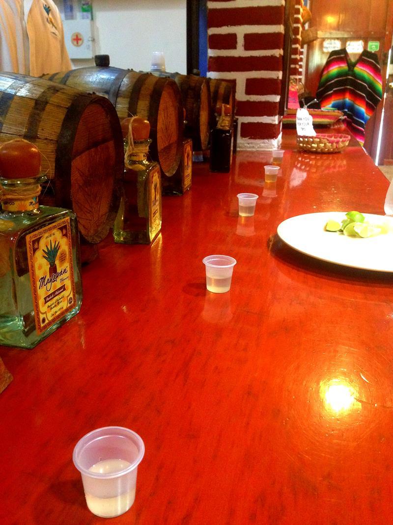Die Mayapan Tequila Destillerie in Valladolid auf der Halbinsel Yucatan