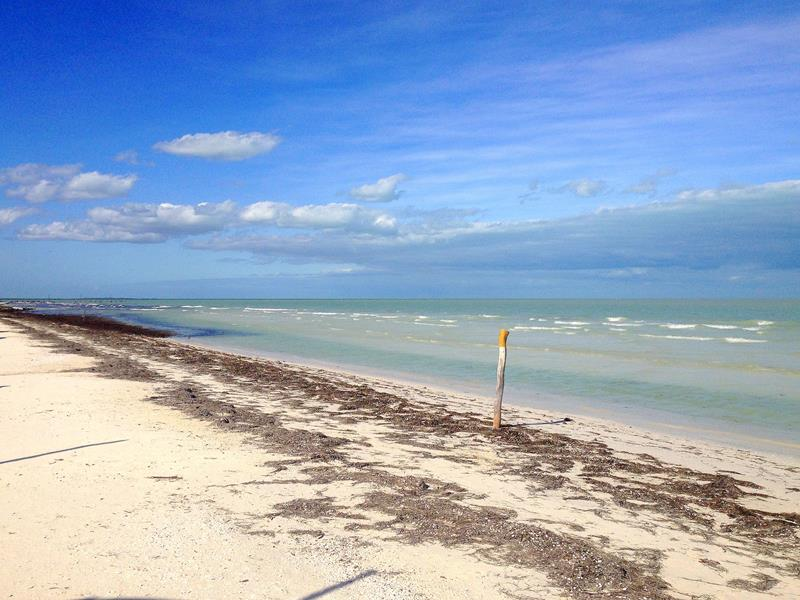 Die naturbelassenen Strände auf der Isla Holbox in Yucatan