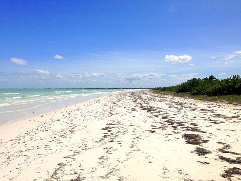 Der kilometerlange Strand an der Nordküste der Isla Holbox