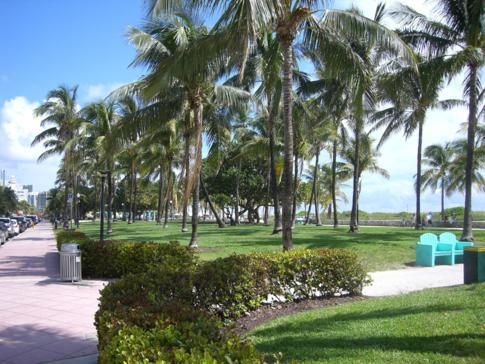 Der Lummus Park am Ocean Drive von Miami Beach