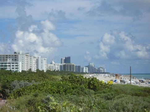 Überblick über fast das komplette Miami Beach vom South Point Park