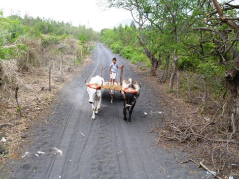 Landleben pur in Nicaragua