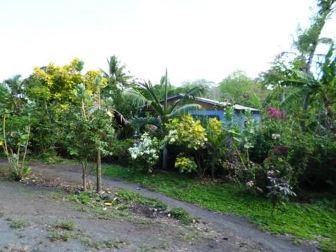 Landleben auf der Isla de Ometepe in Nicaragua