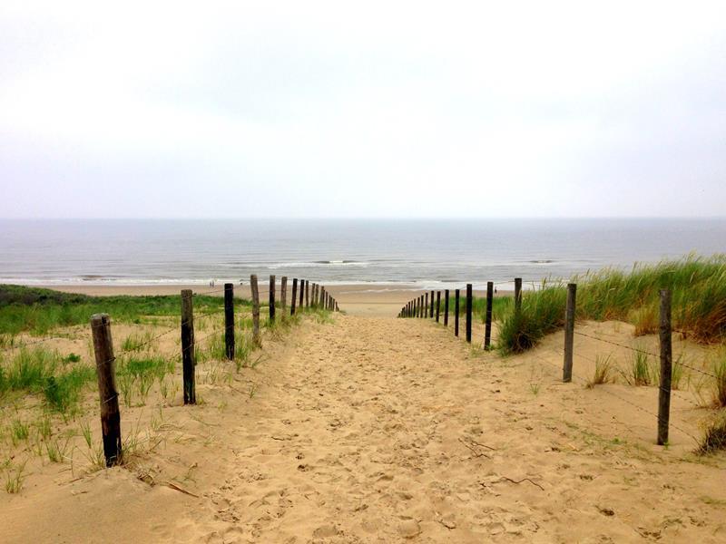 Dünenwanderung in Südholland von Noordwijk nach Scheveningen