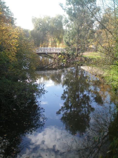Die Magdalen Bridge und der River Cherwell in Oxford