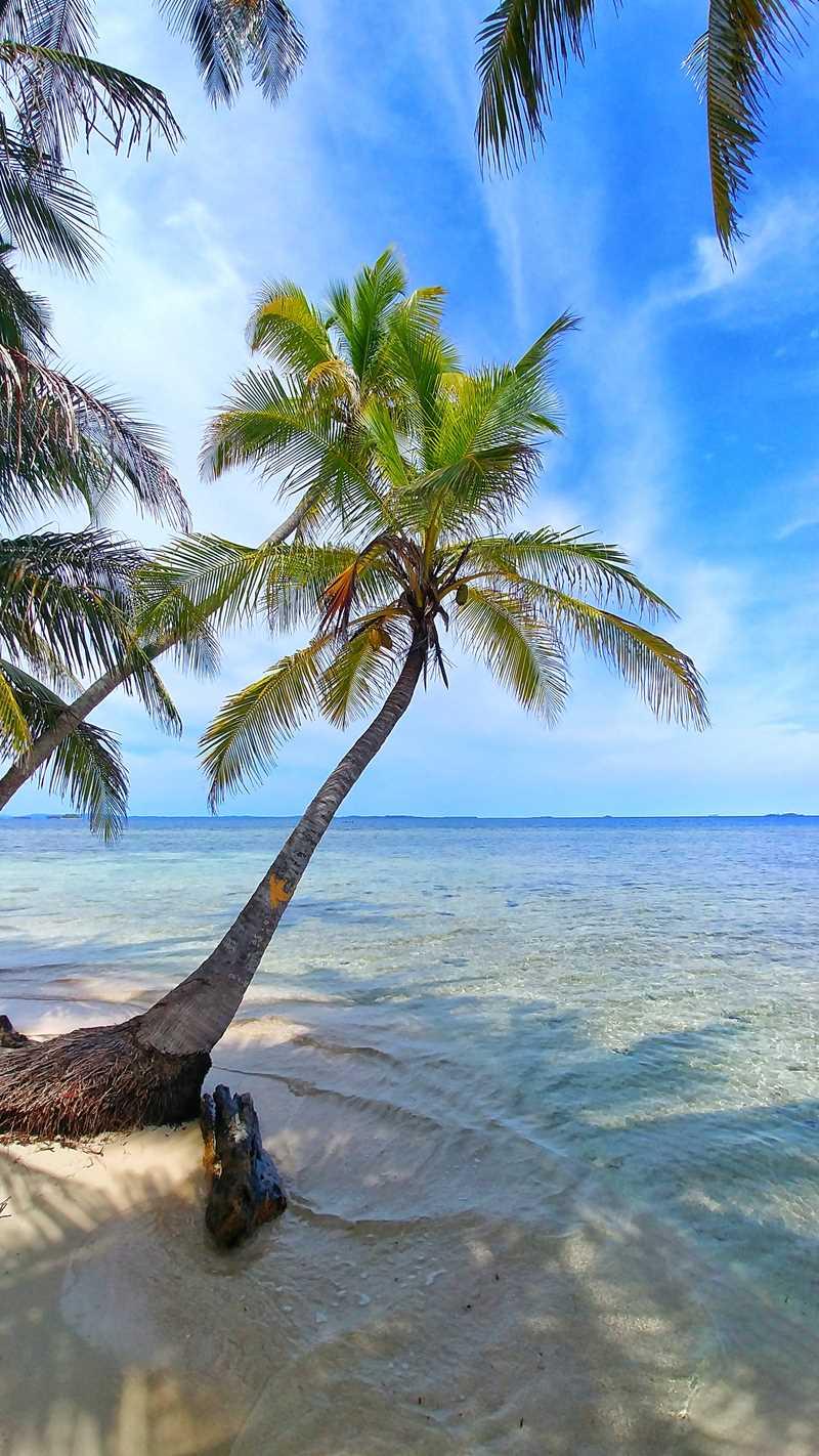 Eine ganz individuelle Tour zu den San Blas Inseln in Panama