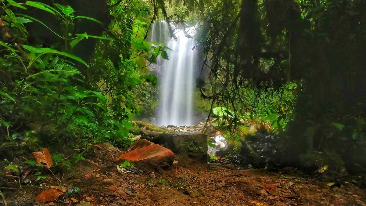 Wanderung in Boquete zum Lost Waterfalls Trail
