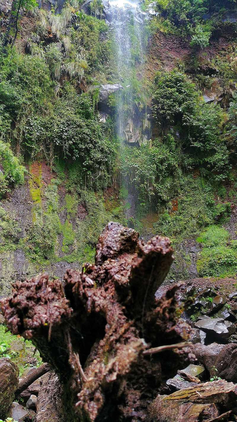 Wanderung in Boquete in den Bergen von Panama entlang des Pipeline Trail