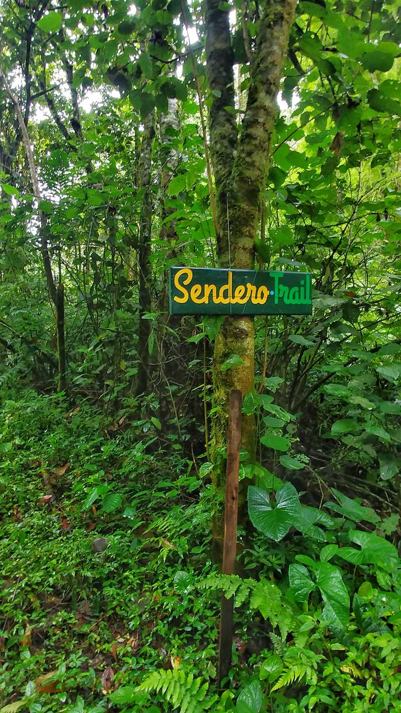 Der Pipeline Trail in Boquete, eine der zahlreichen Wanderungen in Panama