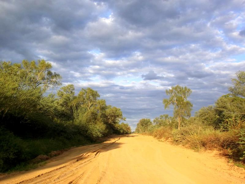 Rückfahrt durch den Chaco in Richtung Bolivien