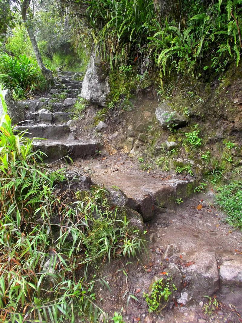 Der Weg hinauf nach Machu Picchu, der berühmtesten Sehenswürdigkeit von Peru