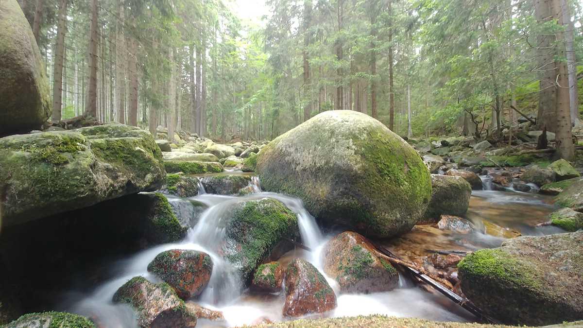 Ein hübscher Wasserfall in Karpacz am Eingang zum Nationalpark Riesengebirge