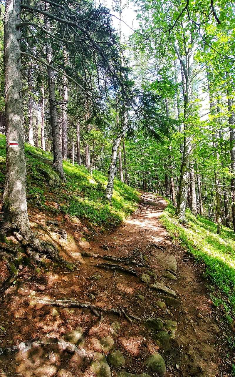 Die Wanderung zum kleinen Hausberg Karpatka