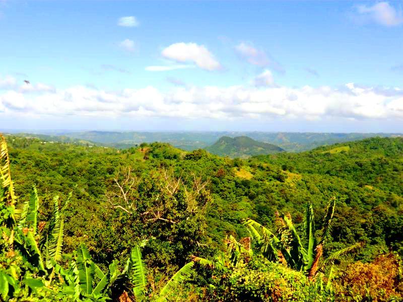 Die landschaftlich schöne Ruta Panoramica im im Zentrum von Puerto Rico