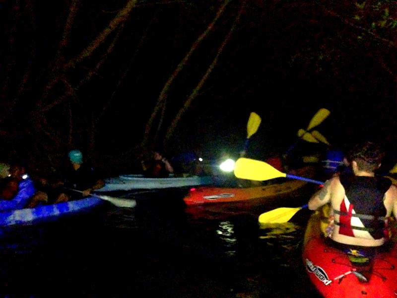 Kayak Tour in Fajardo zur Bioluminescent Bay