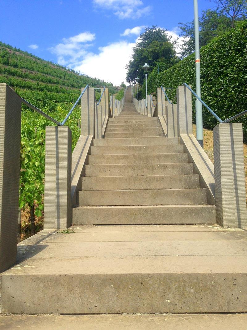 Die Spitzhaustreppe in Radebeul