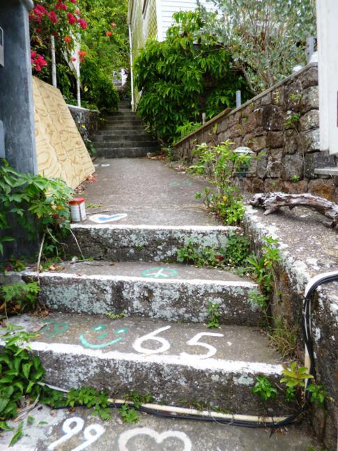 Gepäck nicht empfohlen - zu den El Momo Cottages geht es 67 Stufen nach oben