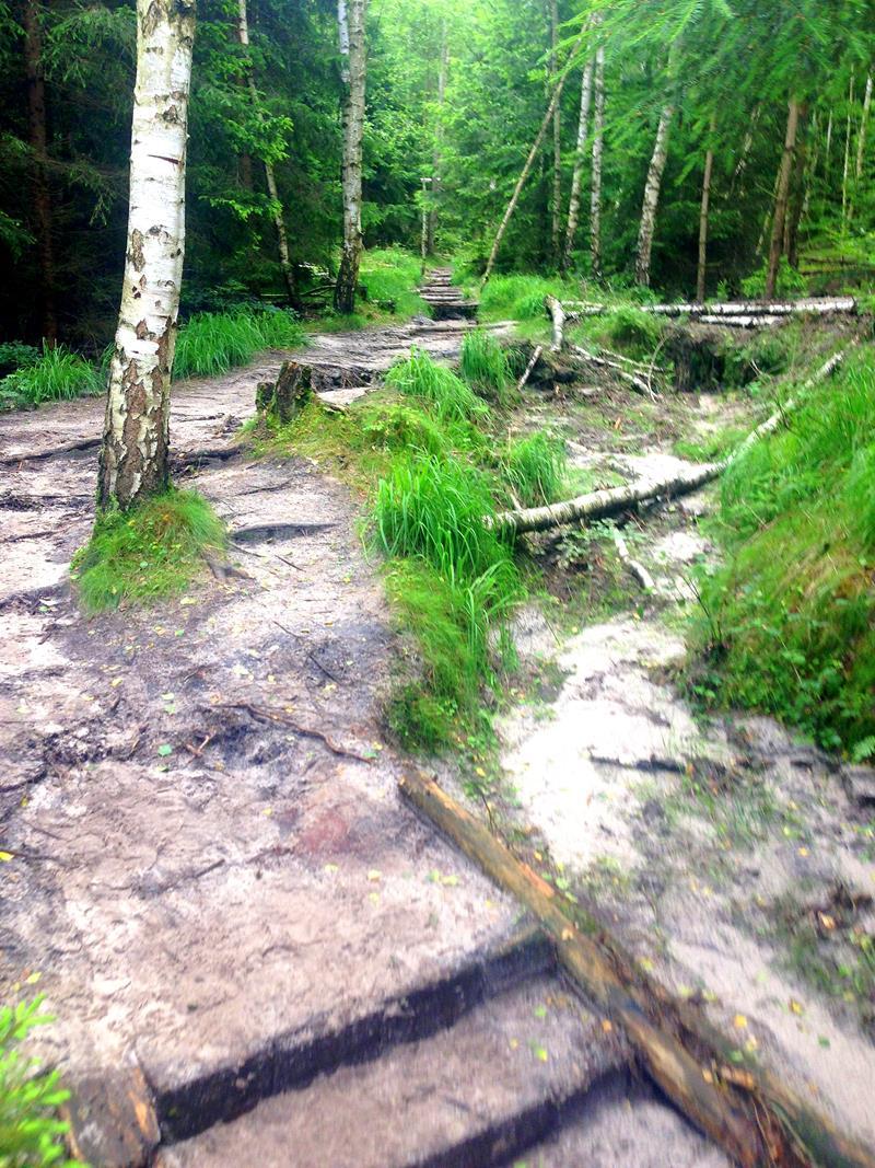 Die Eulentilke, Vorprogramm zur Wilden Hölle in der Sächsischen Schweiz