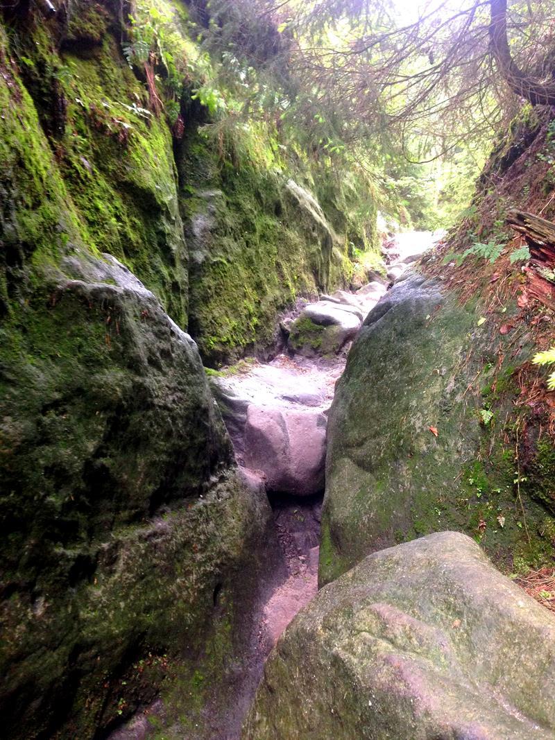 Die spannende Wanderung durch die Wilde Hölle in der Sächsischen Schweiz