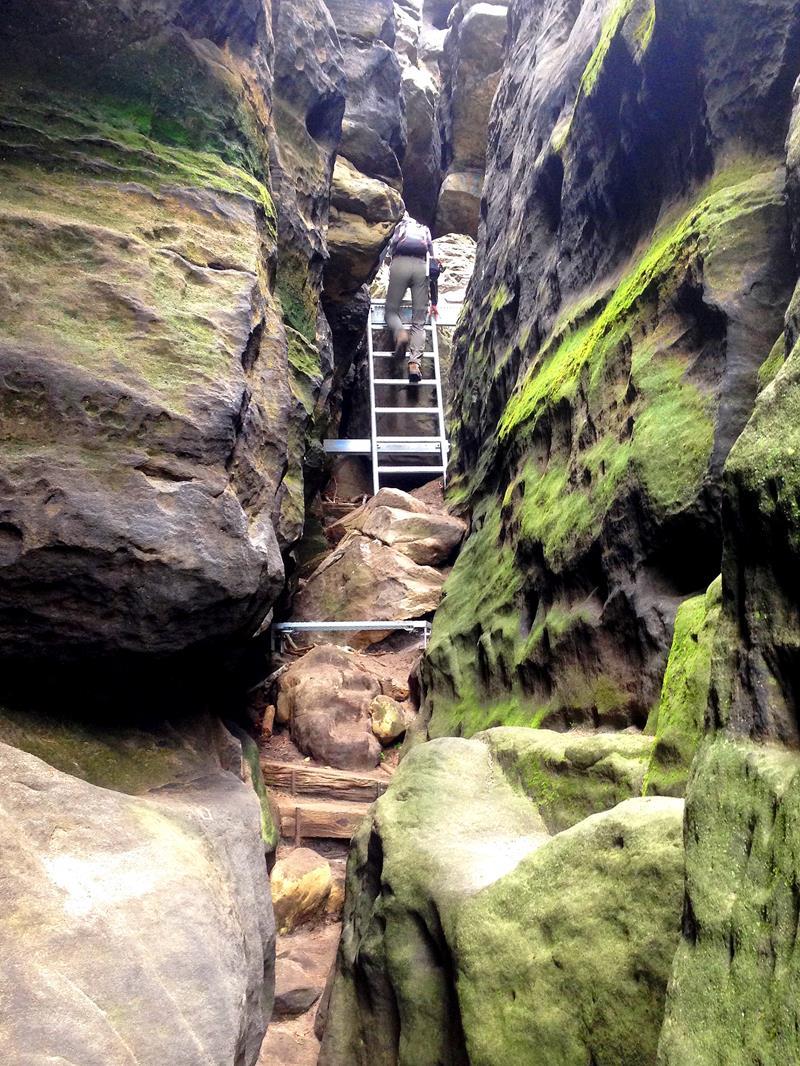 Viele Kletterstiege und Leitern säumen die Wanderwege in der Sächsischen Schweiz