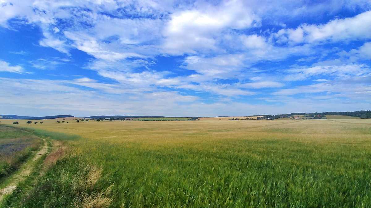Blick über die weiten Felder von Rosenthal-Bielatal