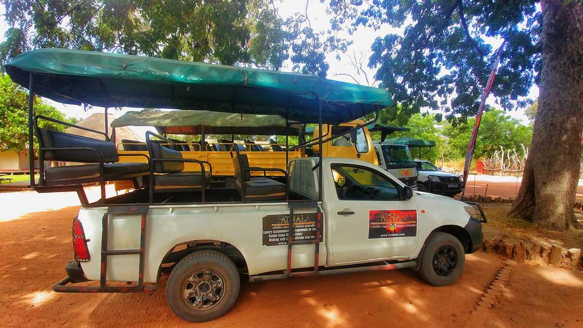 Beeindruckende und günstige Safari im Fathala Wildlife Reserve im Senegal