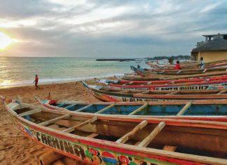Reisebericht Senegal – Dakar, Saly, die Casamance und eine spektakuläre Safari