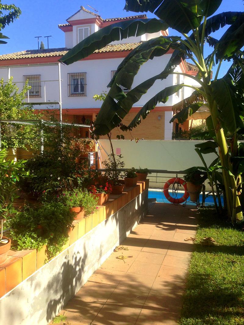 Das sehr empfehlenswerte Lemon Garden Hostel in Sevilla