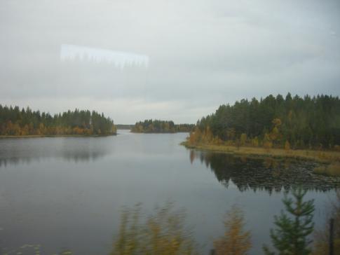 Blick auf die schwedische Taiga während der Zugfahrt von Umea nach Lulea