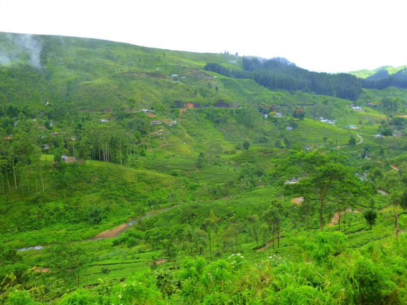 Mit Zug und Bus durch Sri Lanka – Panorama im Schneckentempo