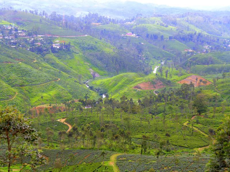 Blick auf das Hochland von Sri Lanka während der Zugfahrt von Kandy nach Haputale