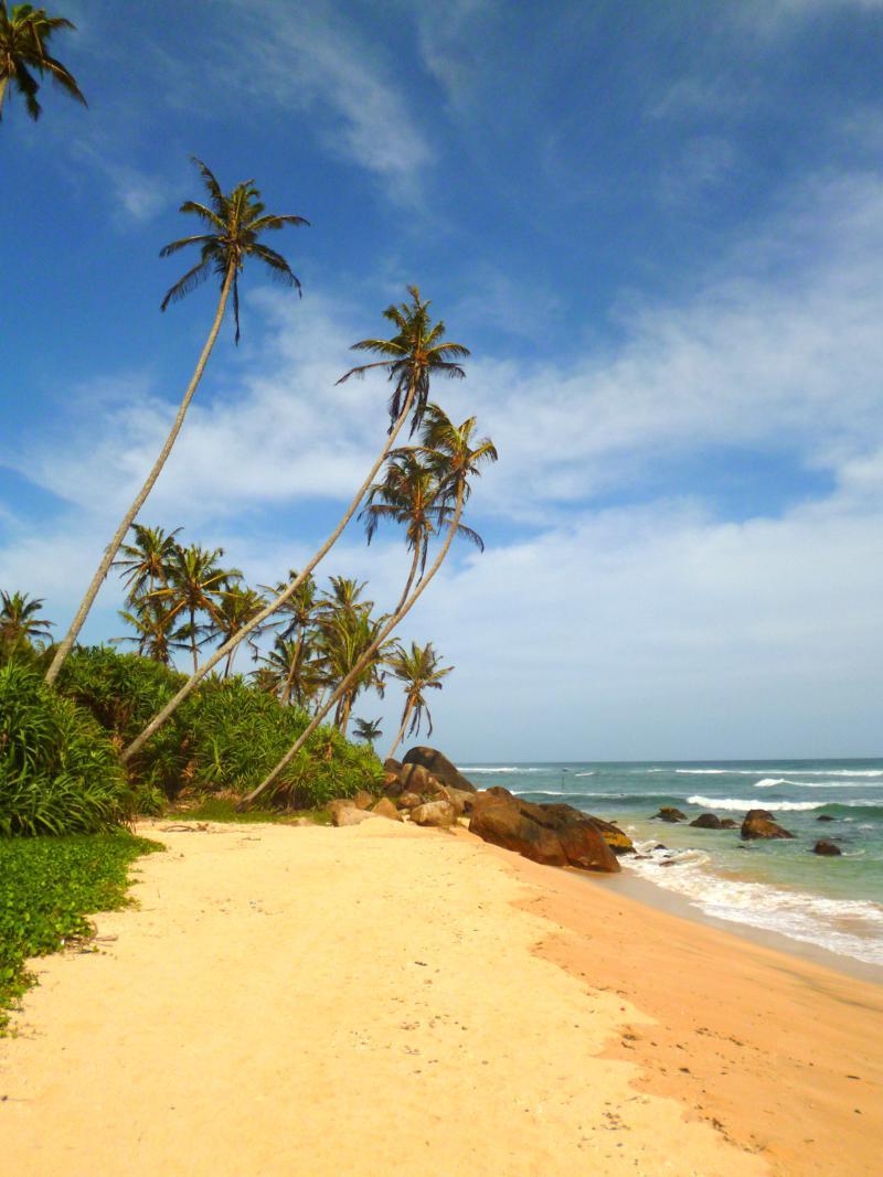 Sri Lankas Traumstrände zwischen Matara und Mirissa