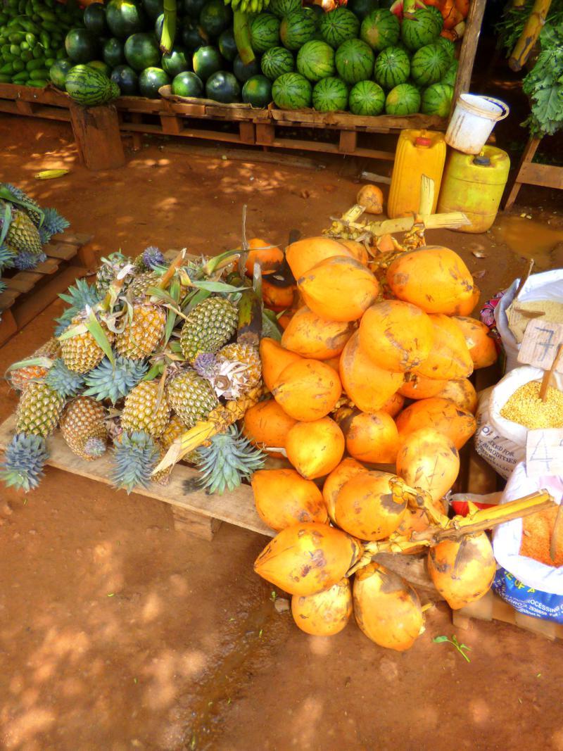 Die süßen und leckeren King Kokosnüsse