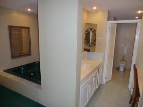 Jacuzzi und Badezimmer in der Luxury Suite der Harmony Suites