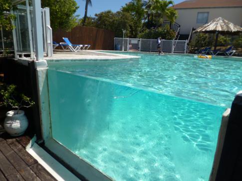Der Aquarium-Pool im Captain Olivers Resort
