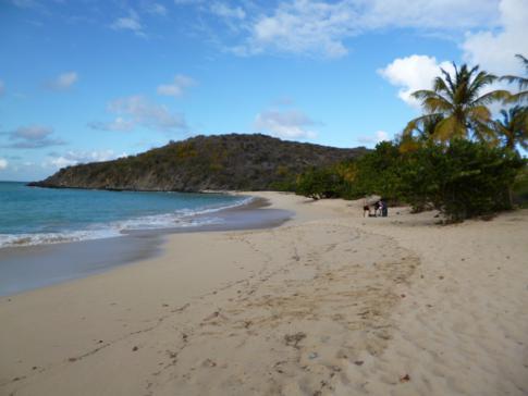 Strand der Happy Bay an der Nordwestküste von St. Martin