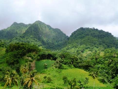 Das tropische und grüne Inselinnere von St. Vincent