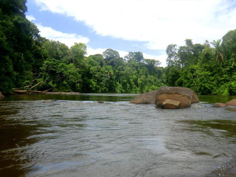 Im Langboot bzw. Koreal auf Suriname River zwischen Atjoni und Botopasi