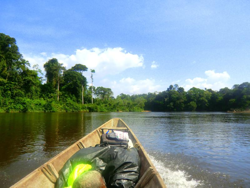 Pingpe Jungle Resort – einfache Lodge am oberen Suriname River