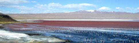 Beeindruckende Reise durch den Süden von Bolivien